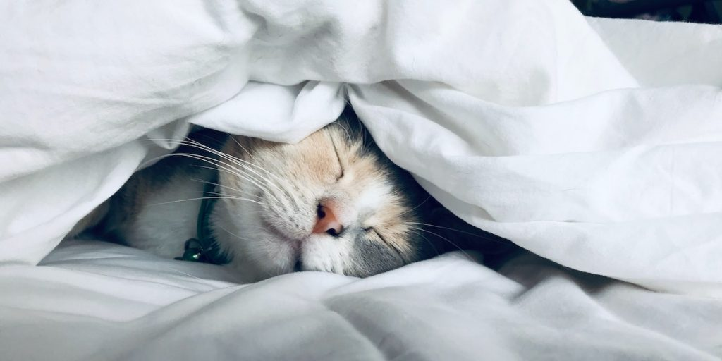 7 Ways to Get a Good Night's Sleep, According to Neuroscience