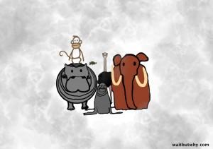 animals-clump-1024x720