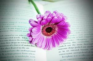 book-163774_1280