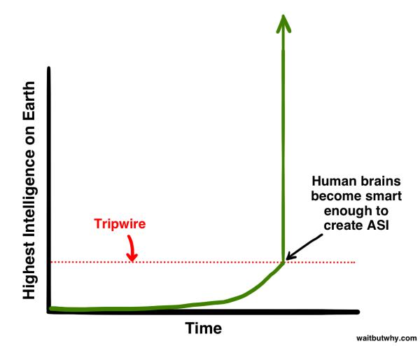 Tripwire-600x494