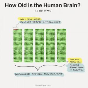 evolution-of-the-human-brain-700x700