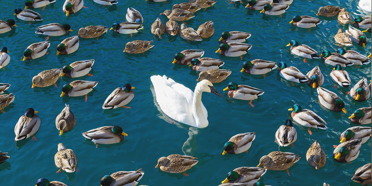 Tips For Standing Out In A Crowded Marketplace